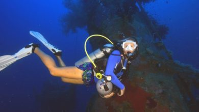 Photo of Images from Dive Munda in the Solomon Islands