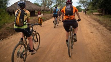 Photo of AFRICA on a bike