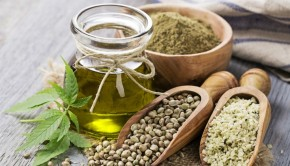 Hemp-foods-in-Australia-and-New-Zealand-Legal-on-the-shelves-and-set-for-boom_wrbm_large