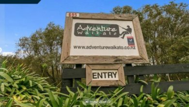 Photo of For Sale – Land, lifestyle and business – Adventure Waikato