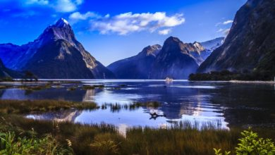 Photo of How To Experience Real Vibe of New Zealand