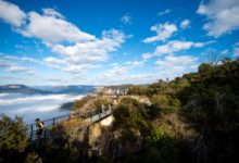 Photo of Sun Shines on Ultra-Trail Australia