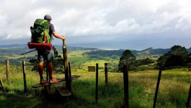 Photo of New walking season marks start of Te Araroa odyssey for many