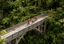 Photo of Mangapurua Cycle Track (Bridge to Nowhere) reopens ready for thousands of eager cyclists
