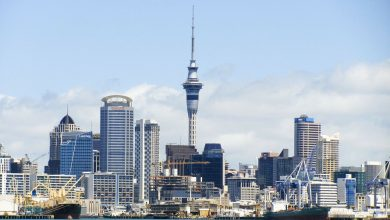 Photo of Top-10 Things to Do in Auckland for $1 after lockdown