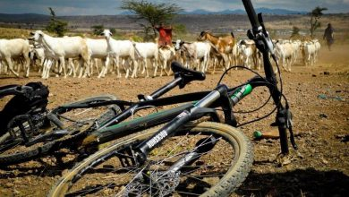 Photo of AFRICA on a bike….