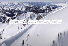 "Photo of WATCH👀 ""COALESCENCE"""