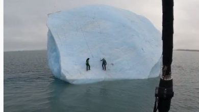 Photo of Iceberg flips with Ice Climbers on it 😱