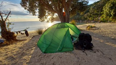 Photo of Going Solo on the Abel Tasman